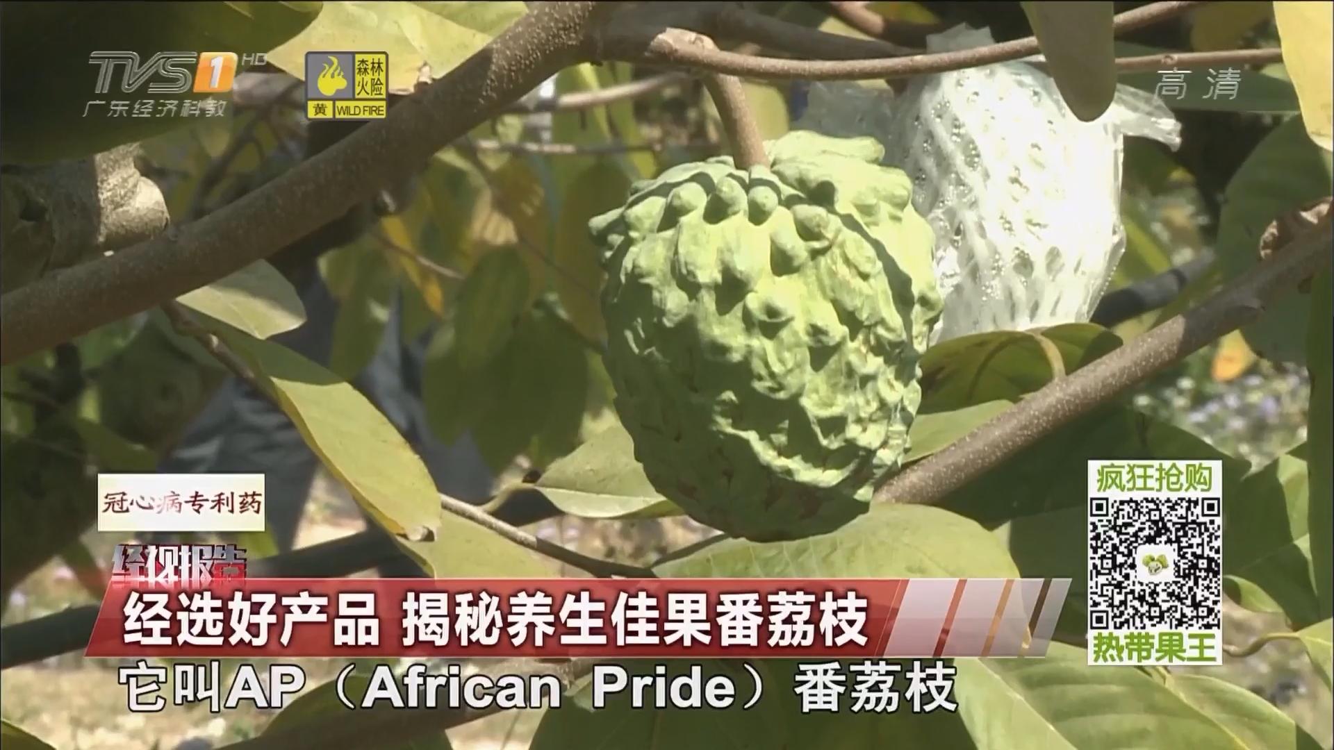 经选好产品 揭秘养生佳果番荔枝