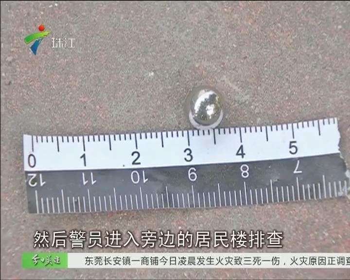 广州:街坊险遭钢珠袭击 皆因有人射老鼠?