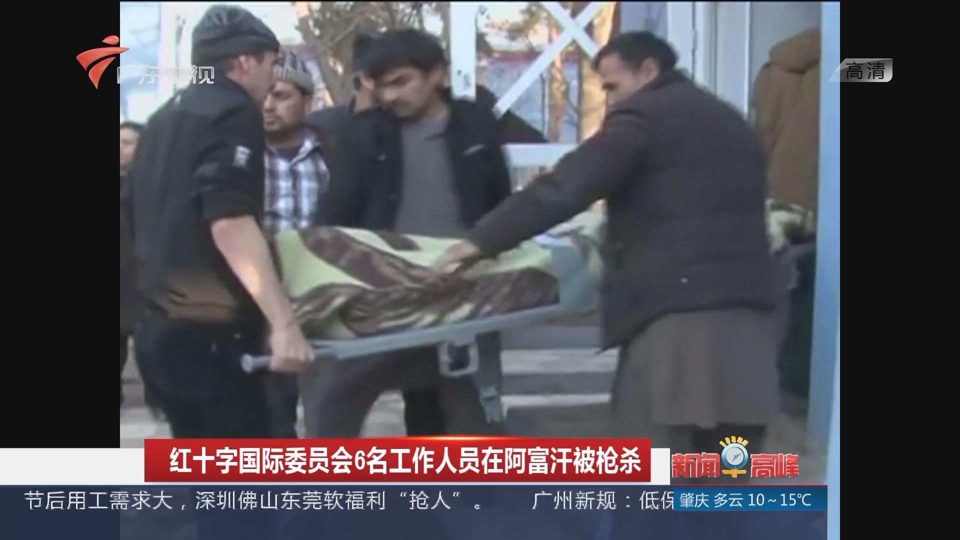 红十字国际委员会6名工作人员在阿富汗被枪杀