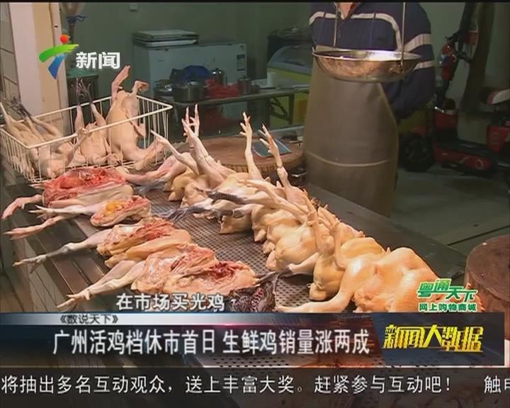 广州活鸡档休市首日 生鲜鸡销量涨两成