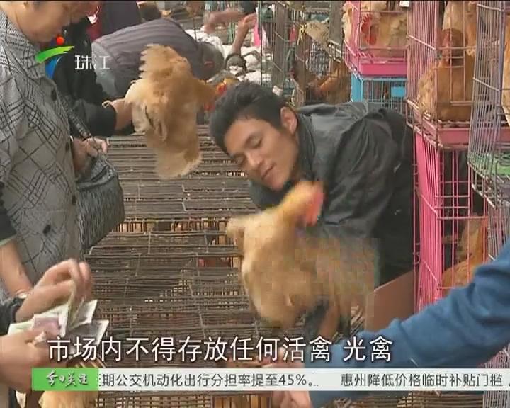 广州:休市措施升级 后天起半月停卖活鸡