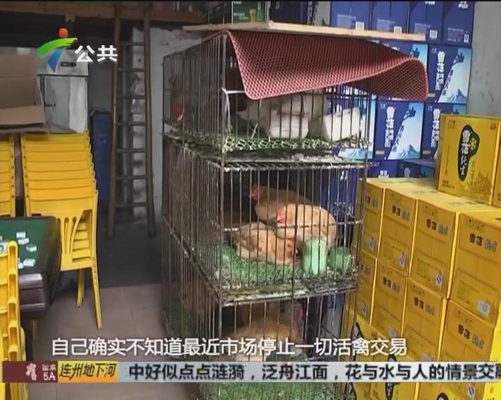 广州:活禽市场休市期间 饭店门前还摆卖活禽