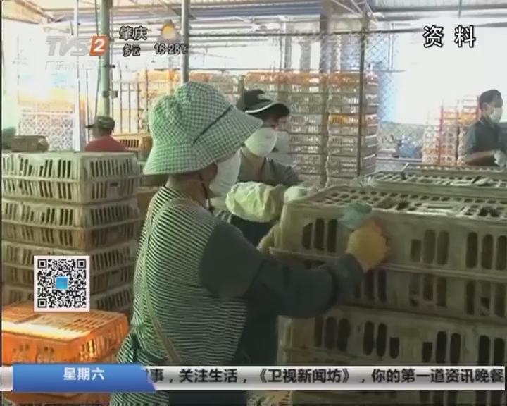 疫情防控:暂停H7N9高风险省份调入活禽