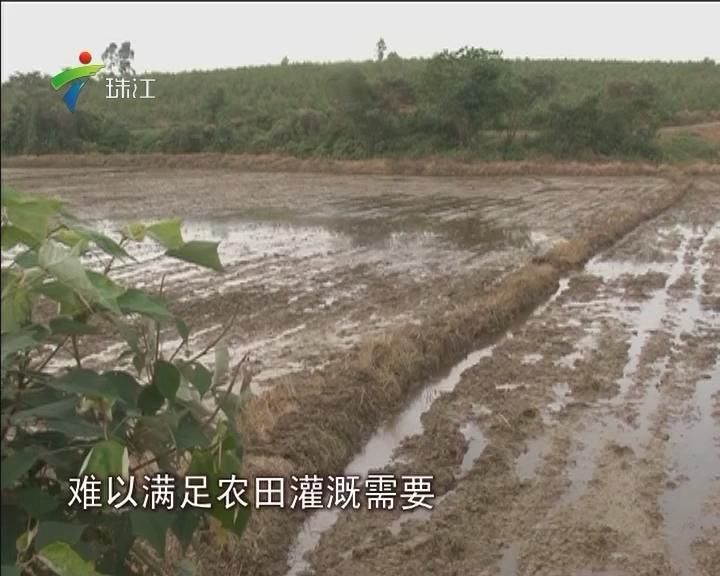 吴川:农田灌溉难 竟因水库要兼顾养殖需要?