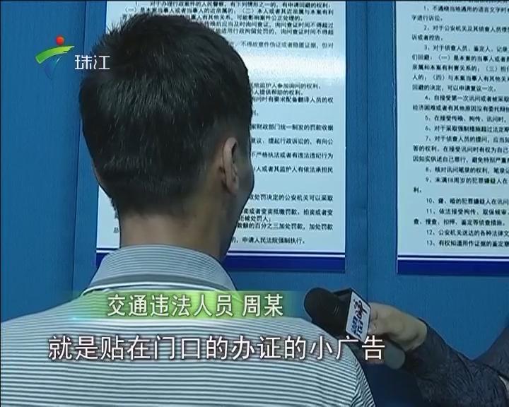 江门:大胆司机买假证开大货车 拘留15天罚款6500元