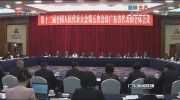 广东代表团召开全团会议审议政府工作报告