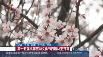第十五届桃花旅游文化节西藏林芝开幕