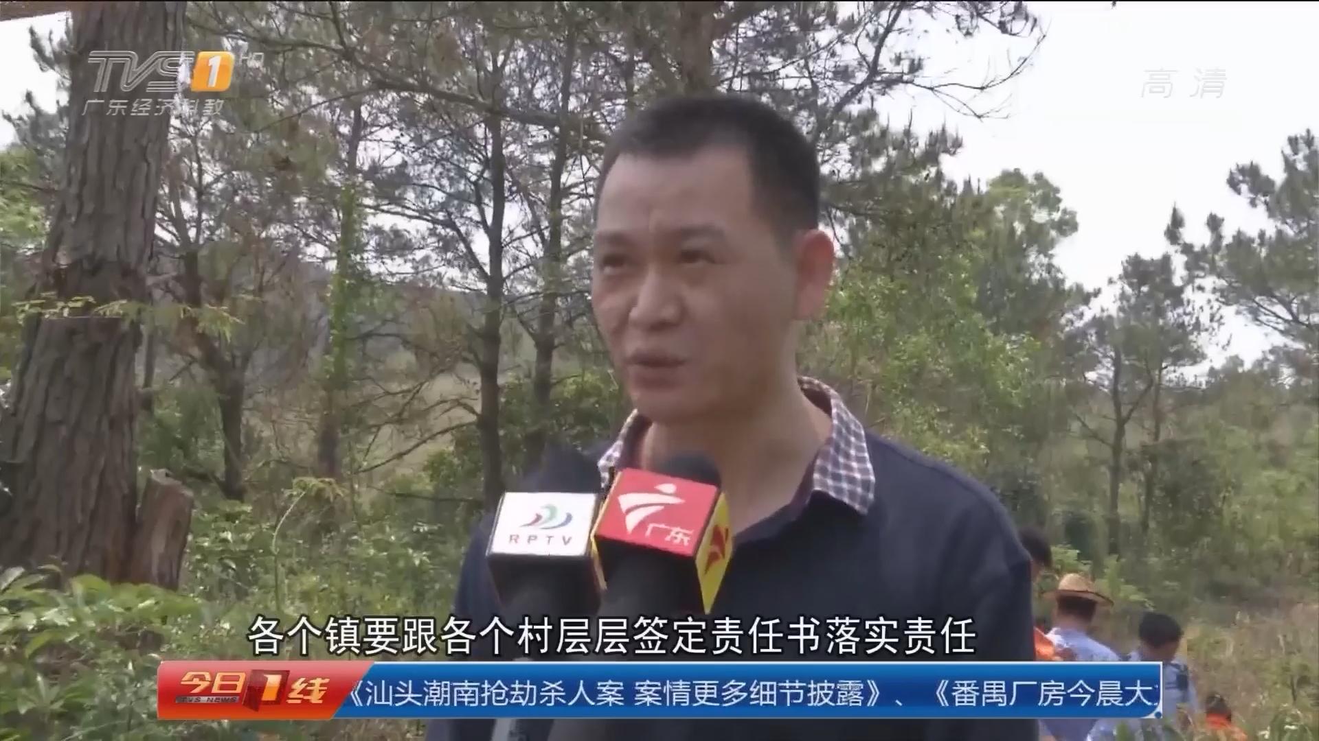非法捕鸟追踪:粤东四市展开专项检查