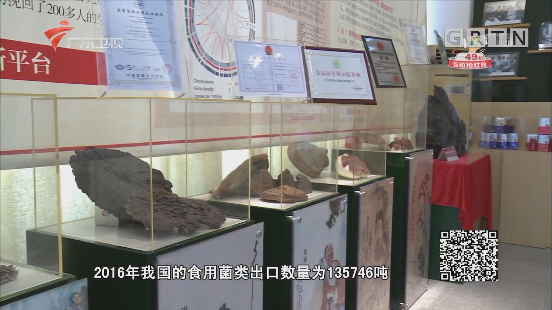 粤微菇品礼盒 广东卫视淘宝商城等你选购