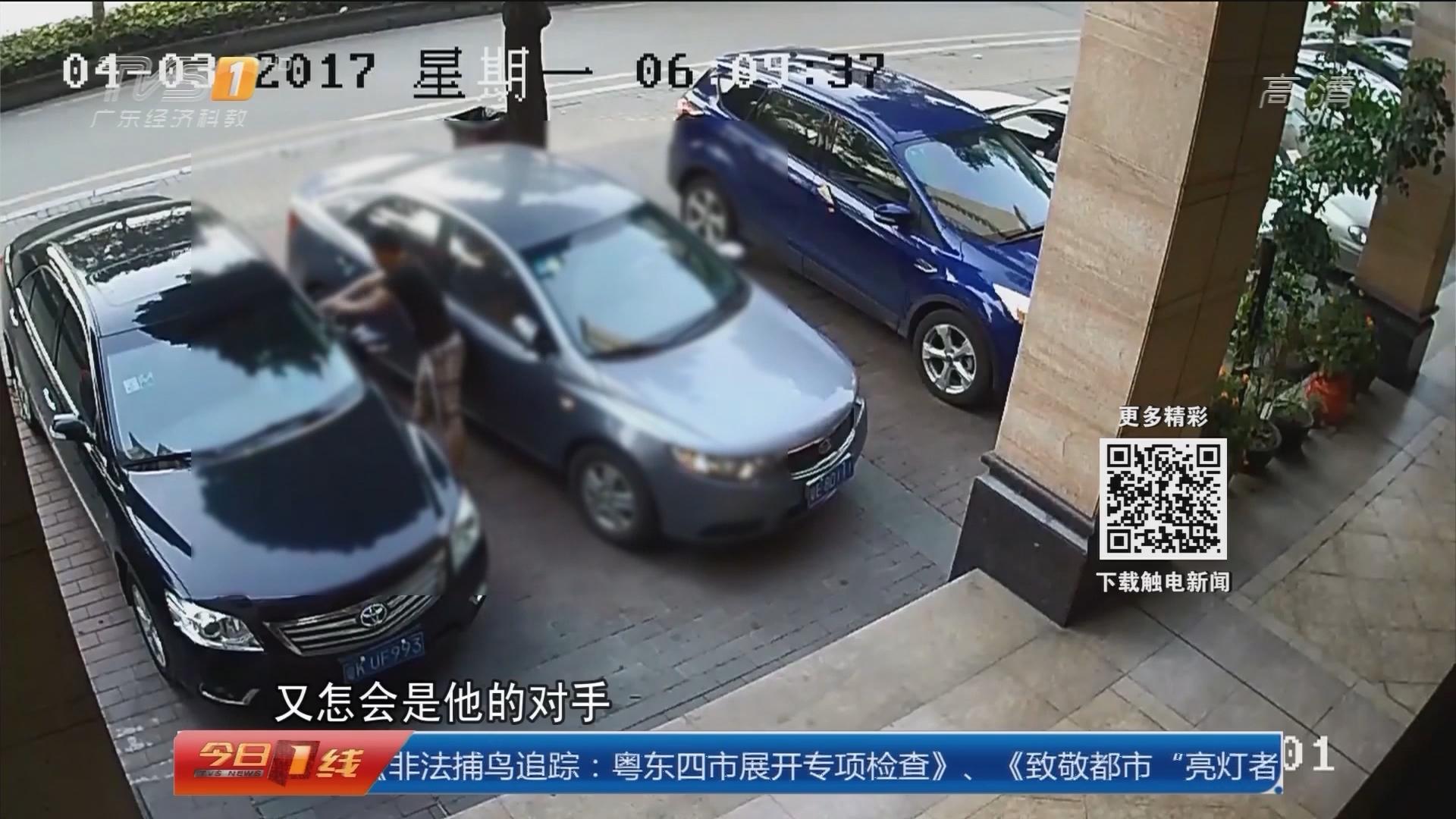 """佛山顺德:男子街头打""""醉拳"""" 路边十车惨遭殃"""