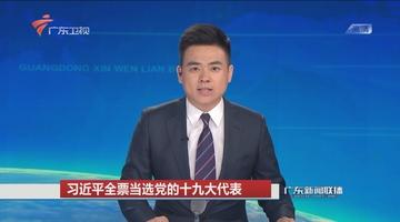习近平全票当选党的十九大代表