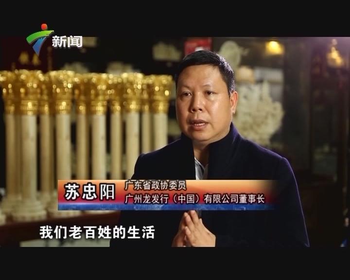 20170409《政协委员》苏忠阳:弘扬骨雕艺术 助力公共外交