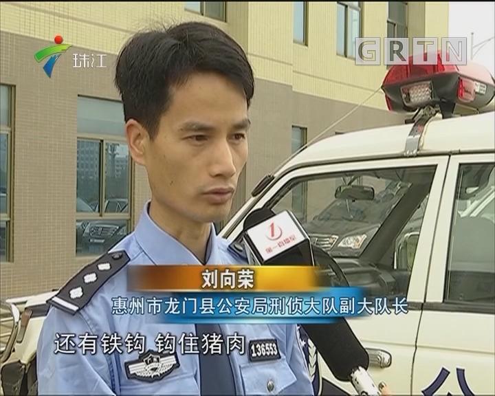 惠州:男子合伙偷鳄鱼 又吃又卖