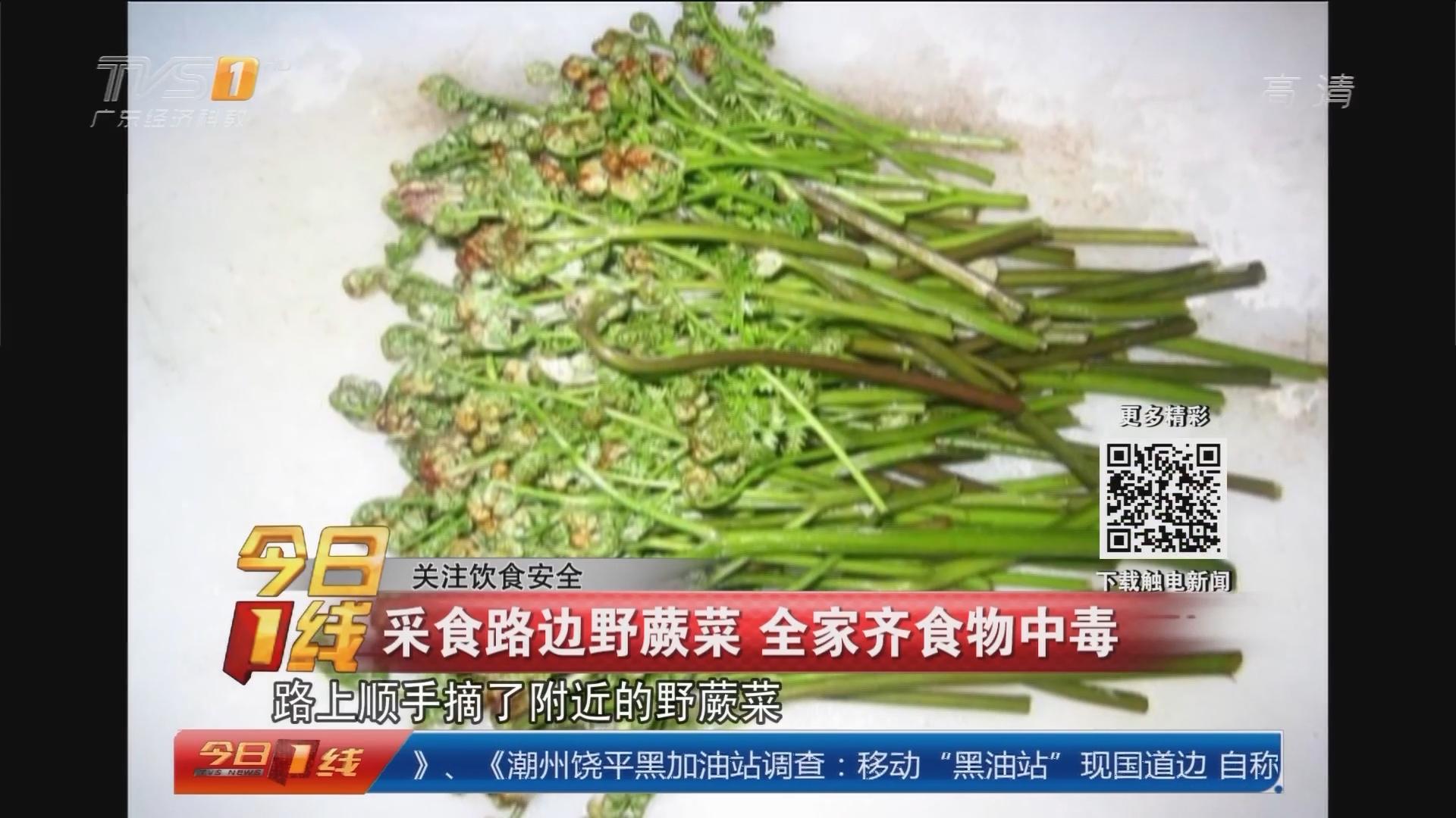 关注饮食安全:采食路边野蕨菜 全家齐食物中毒