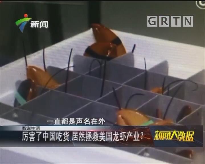 厉害了中国吃货 居然拯救美国龙虾产业?