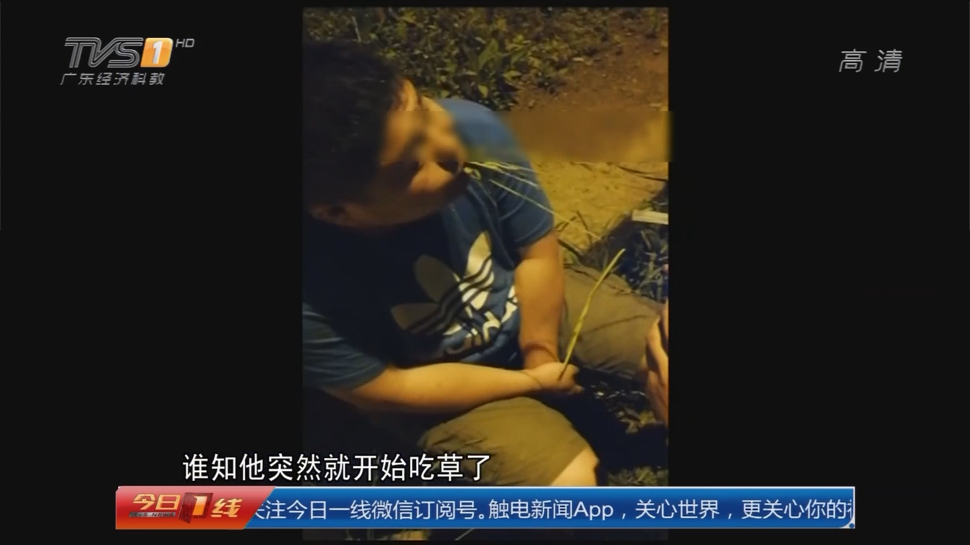 """浙江义乌:酒驾被抓 """"奇葩""""司机路边吃草"""