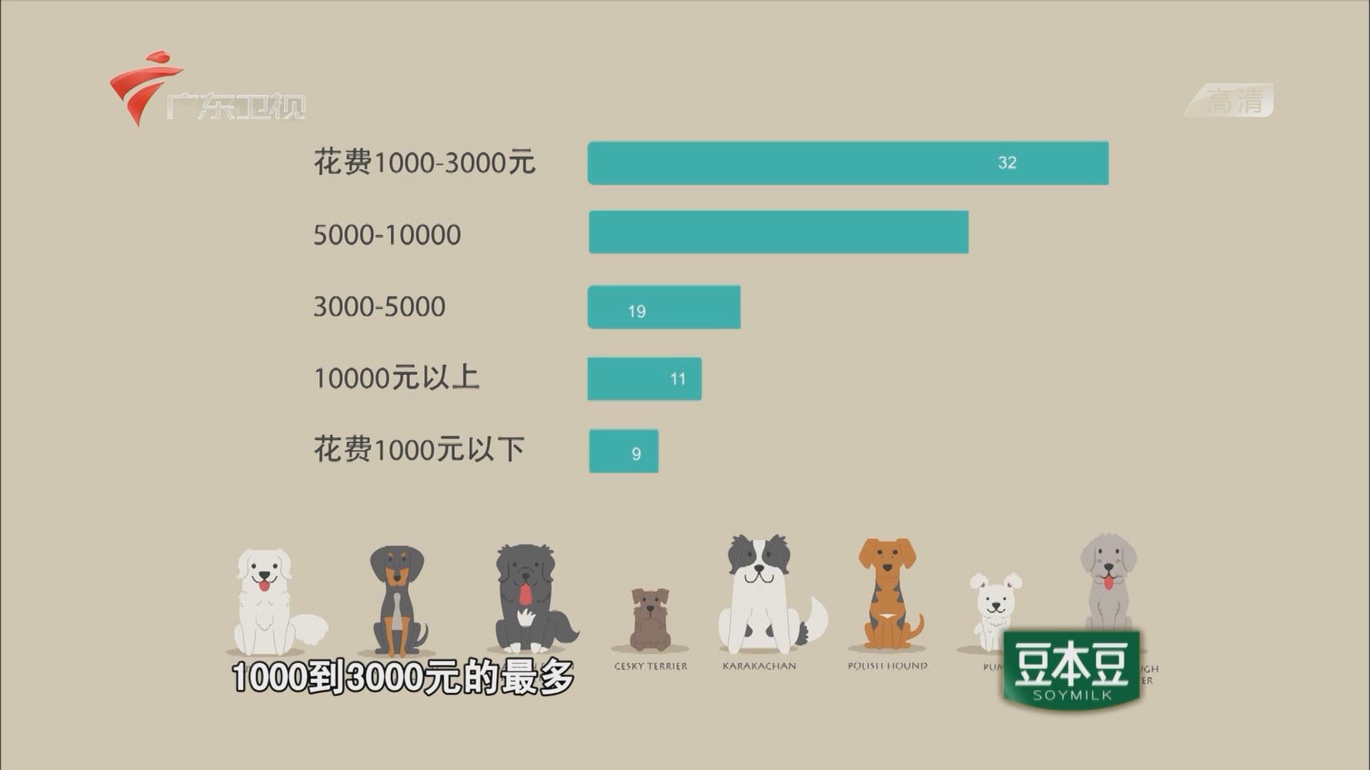 宠物的花销数据