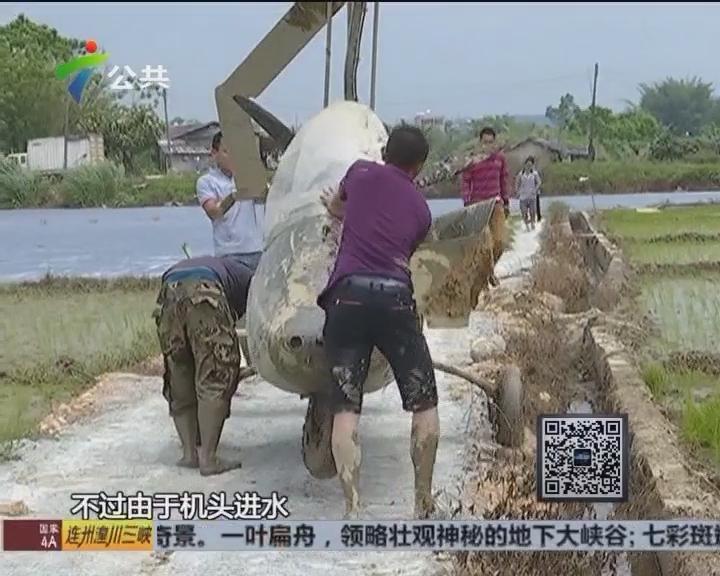 惠州:飞机紧急降落 原是突然没油