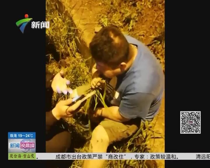 义乌:为躲避查酒驾 男子竟坐在路边吃草