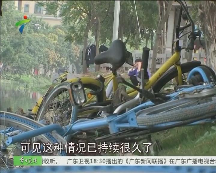 """广州:又见公共单车被毁 """"尸横遍野"""""""