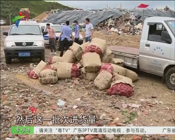 """梅州:3000斤番薯""""农残""""严重超标"""