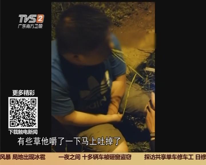 浙江义乌:酒驾被抓 奇葩司机路边吃草