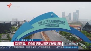 深圳前海:打造粤港澳大湾区的璀璨明珠