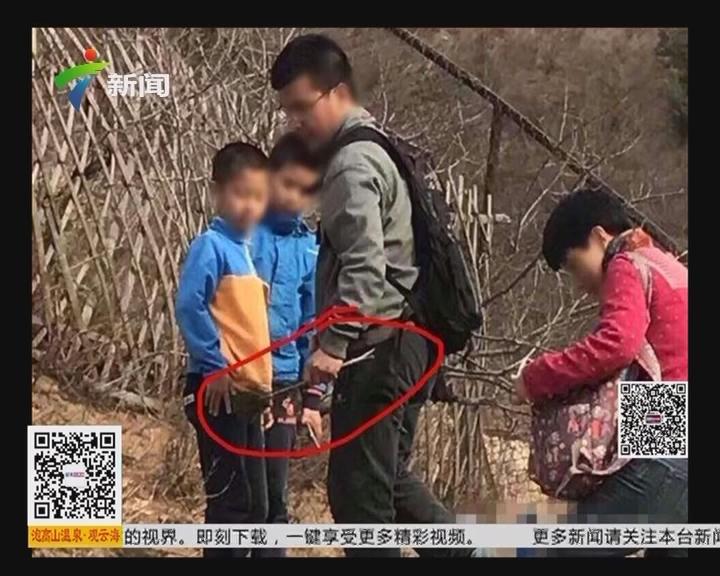 """北京八达岭野生动物园:网友称""""游客疑拔孔雀毛"""""""
