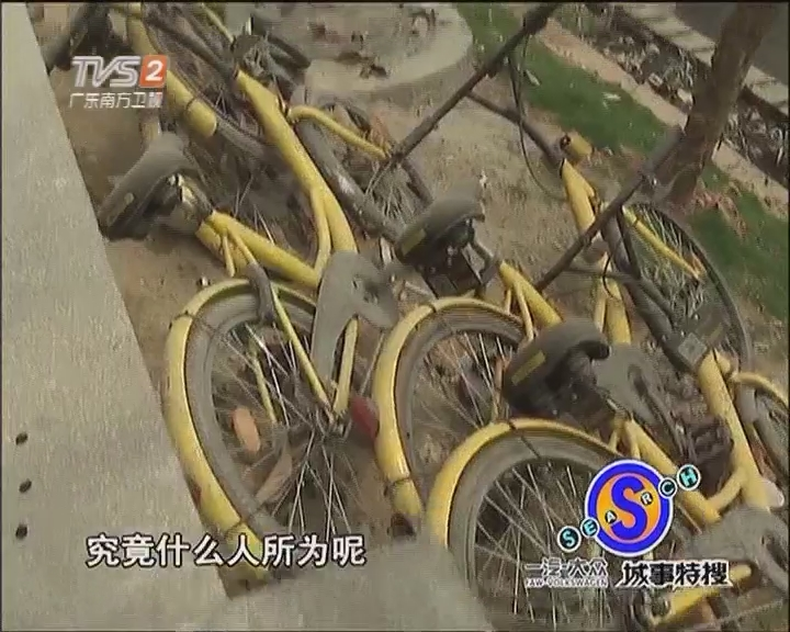 几十辆共享单车泡河涌
