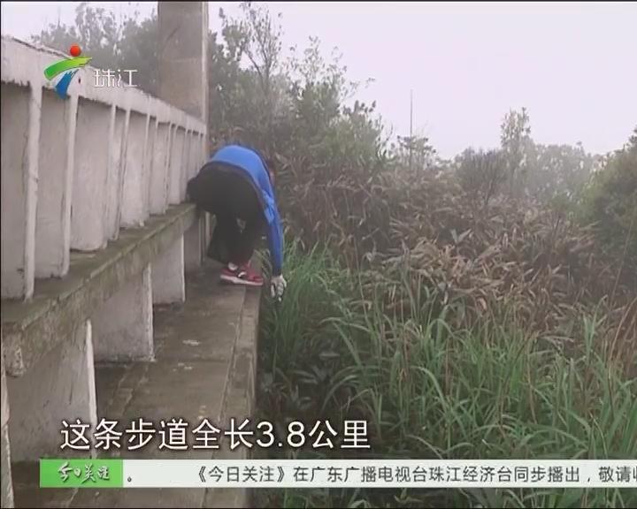 从化:五指山徒步线路重开 志愿者呼吁爱护环境