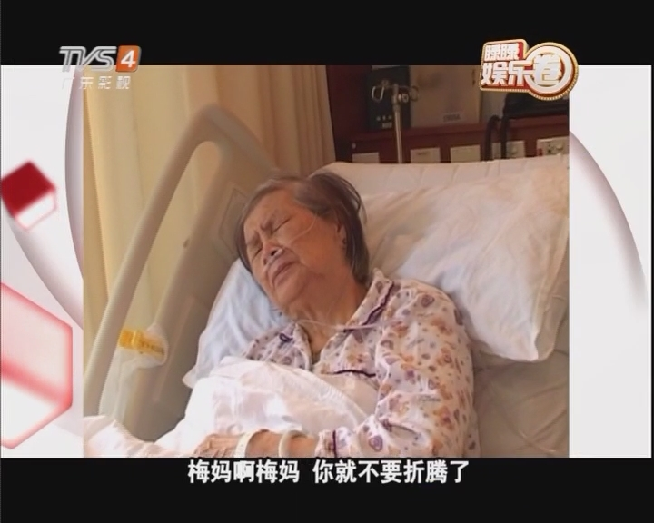 梅妈在梅艳芳去世后多次争产失败