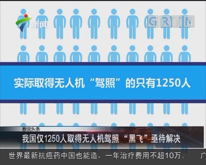 """我国仅1250人取得无人机驾照 """"黑飞""""亟待解决"""