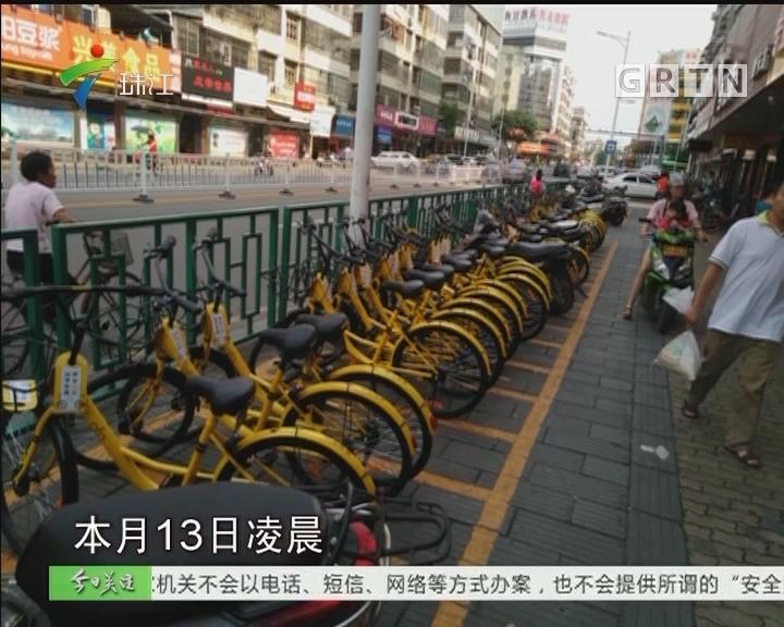 """肇庆:""""小黄车""""被收缴 引进共享单车条件未成熟"""