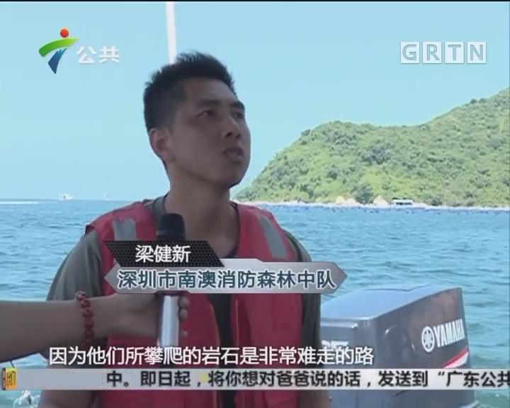深圳:南澳又有驴友被困 17人被潮水封路