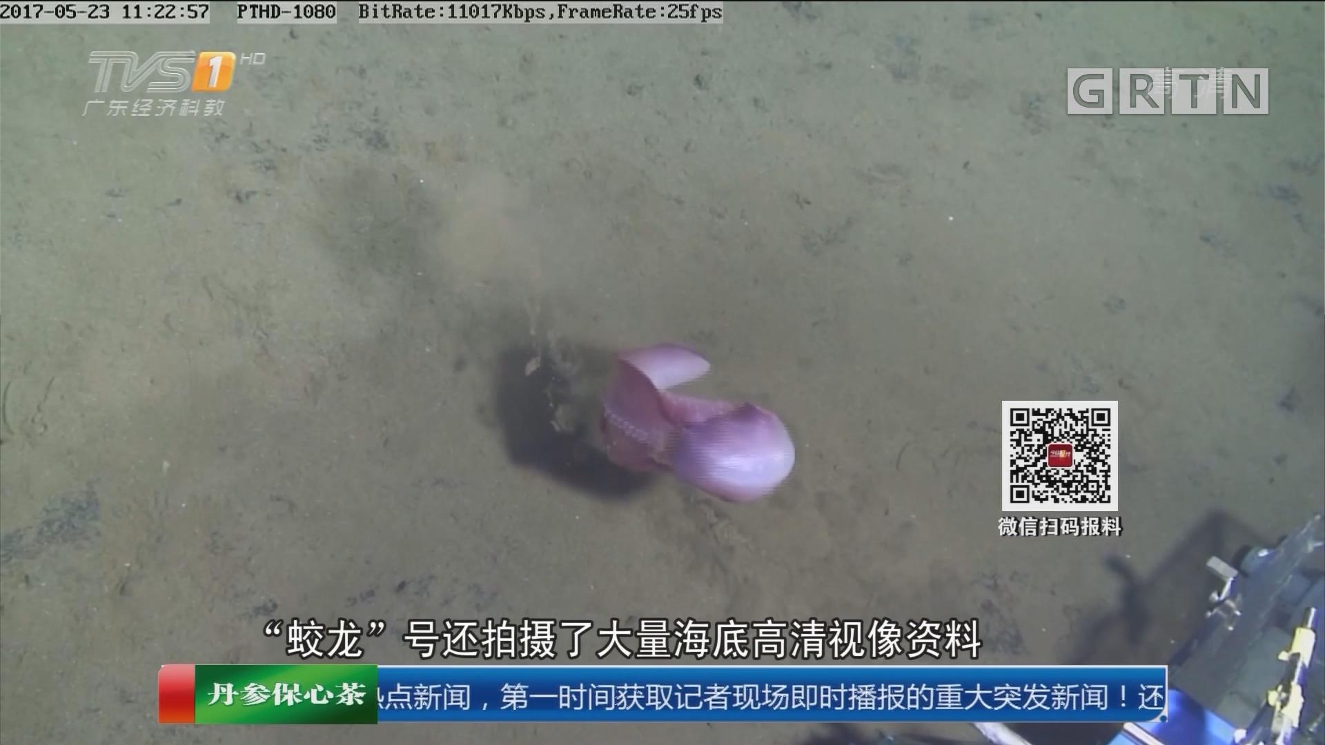 蛟龙号科研考察:蛟龙号下潜4811米 抓到红色大海参