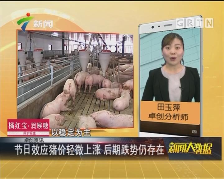 节日效应猪价轻微上涨 后期跌势仍存在