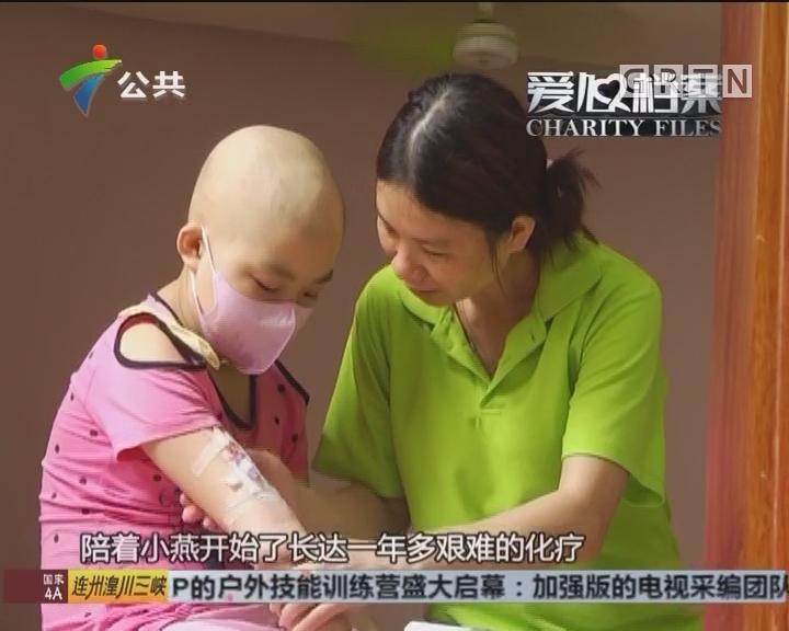 """爱心档案:""""千纸鹤女孩""""与白血病的抗争记"""
