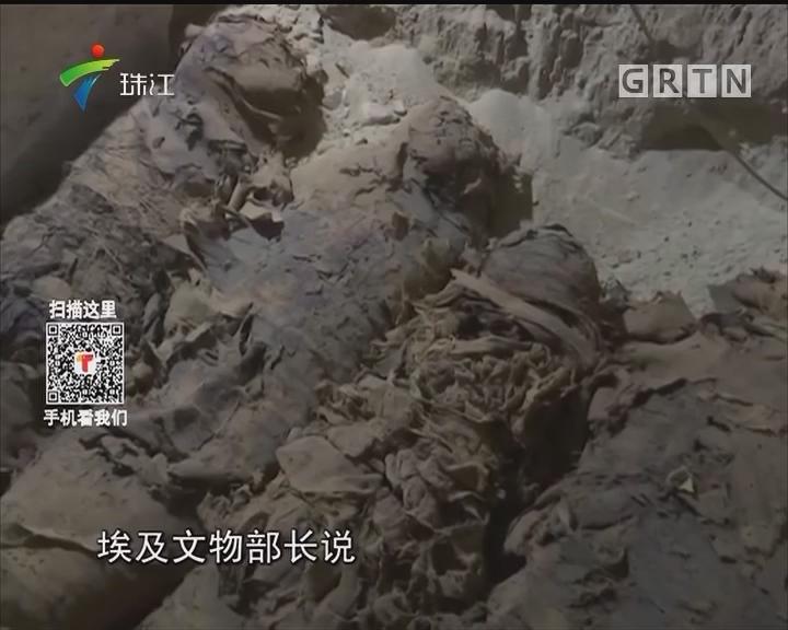 埃及一古墓出土17具人类木乃伊