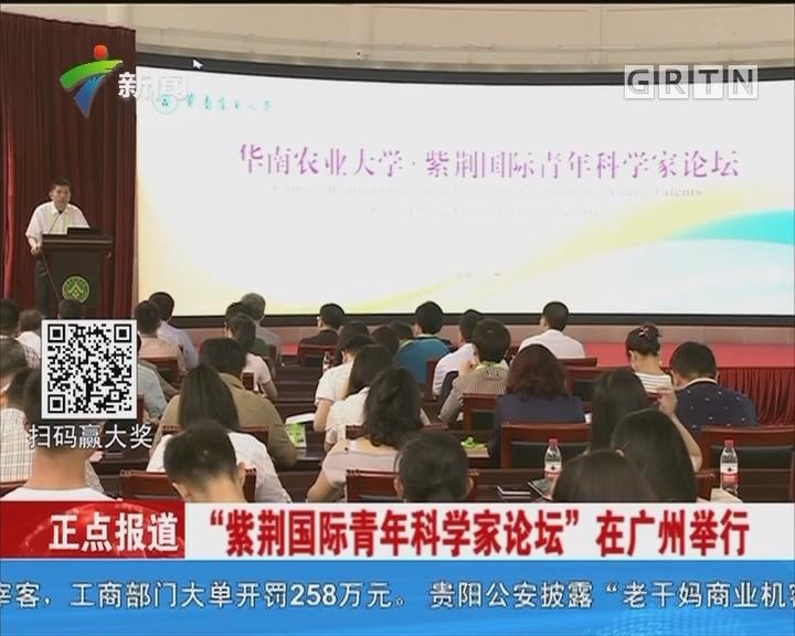 """""""紫荆国际青年科学家论坛""""在广州举行"""