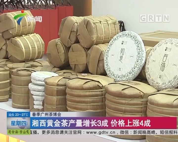 春季广州茶博会:湘西黄金茶产量增长3成 价格上涨4成