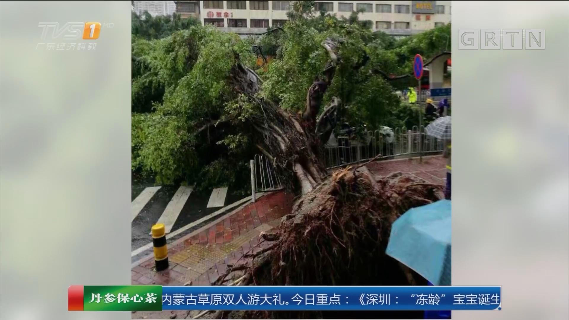 广州海珠区:水深一米二 城管送设备应急