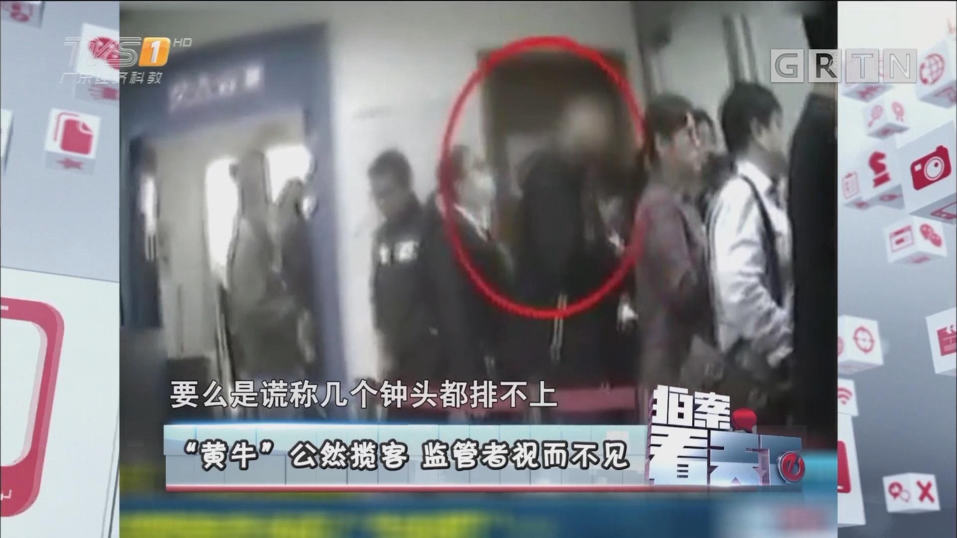 """20170501《拍案看天下》""""黄牛""""公然揽客 监管者视而不见"""