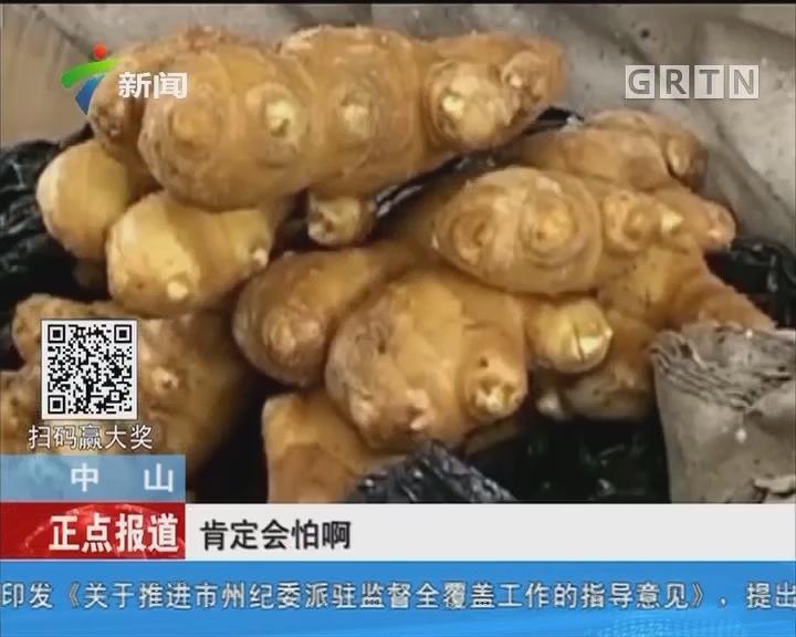 """中山:国内惊现""""硫磺姜"""" 长期食用危害大"""