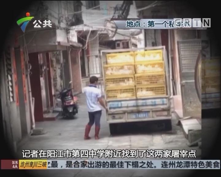 阳江:市民投诉小作坊 私宰家禽臭味难忍