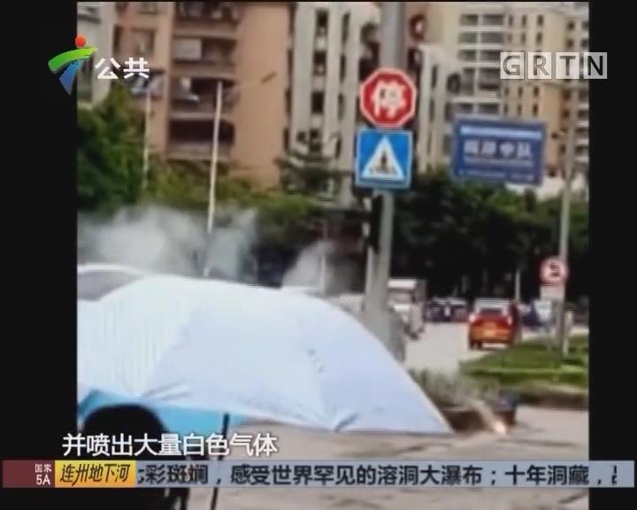 肇庆:绿化带旁突喷白烟 消防立即抢修