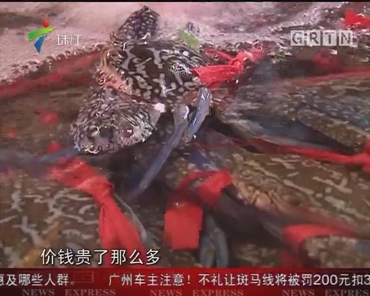 湛江:休渔期海鲜价格飞涨 龙虾涨超三倍