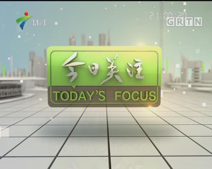 20170520《今日关注》广州幼升小现场报名今天开始