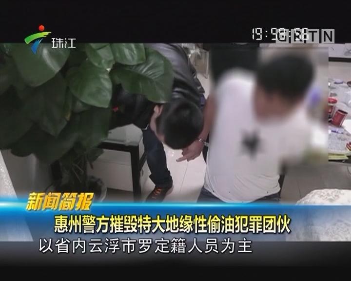 惠州警方摧毁特大地缘性偷油犯罪团伙