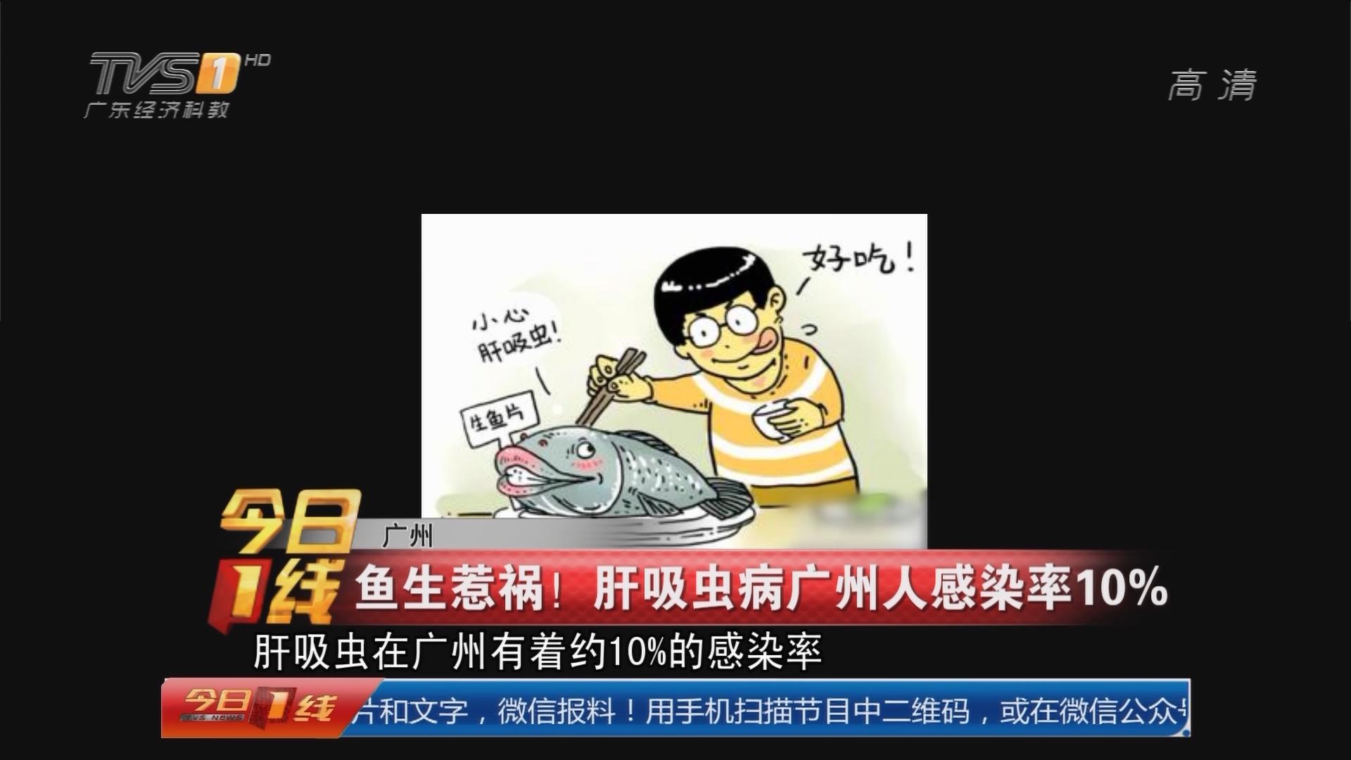 广州:鱼生惹祸!肝吸虫病广州人感染率10%