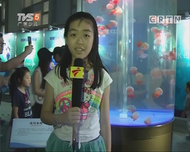[2017-06-02]南方小记者:邂逅海洋精灵